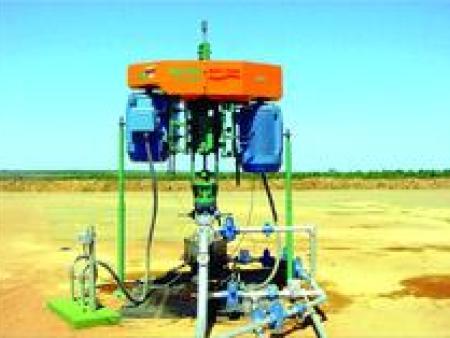 耐驰中石油油气混输单螺杆泵