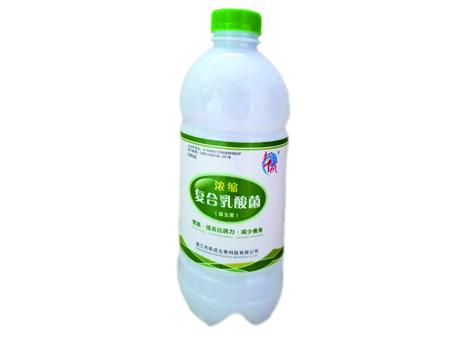 复合乳酸菌