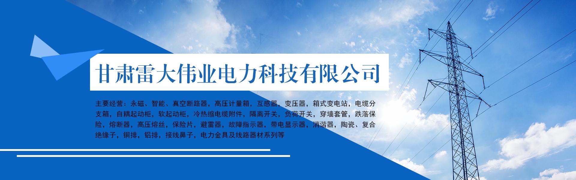 甘肃雷大鑫业电力设备有限公司