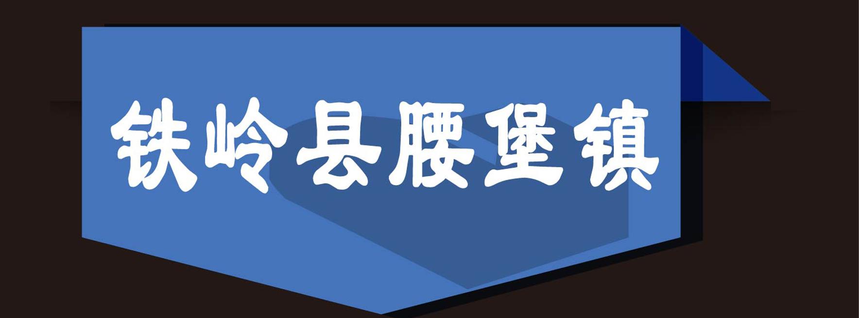 铁岭县腰堡镇小马打井队