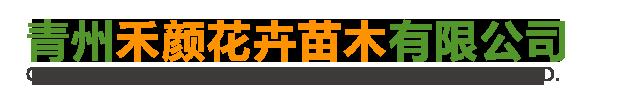 青州禾颜花卉苗木有限公司