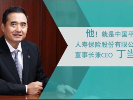 中国平安人寿保险CEO丁当个人宣传片