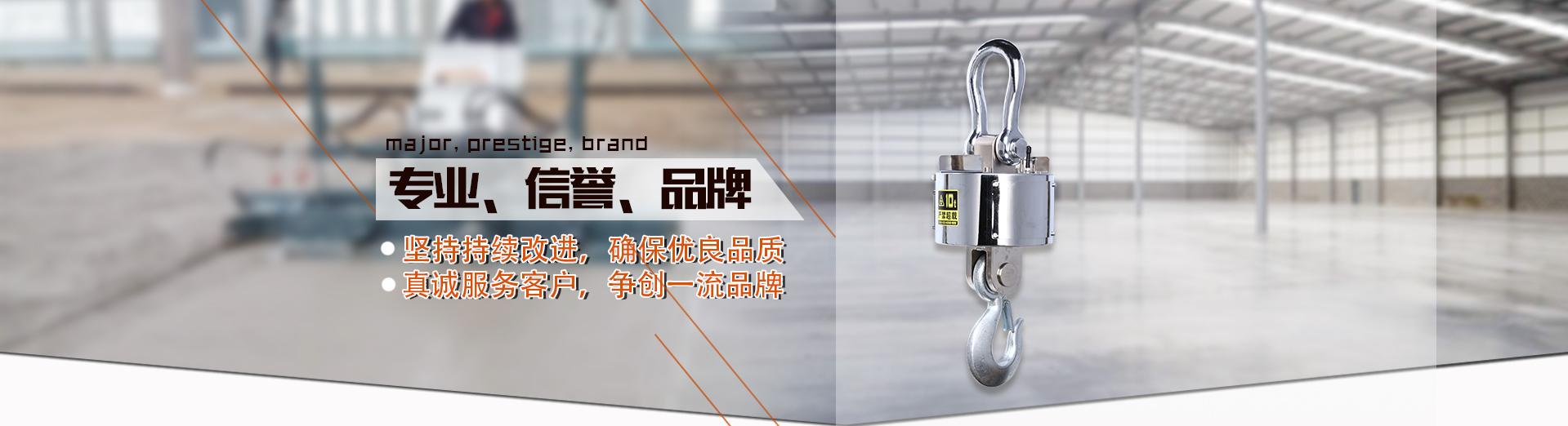 宁波北仑依托力称重设备有限公司