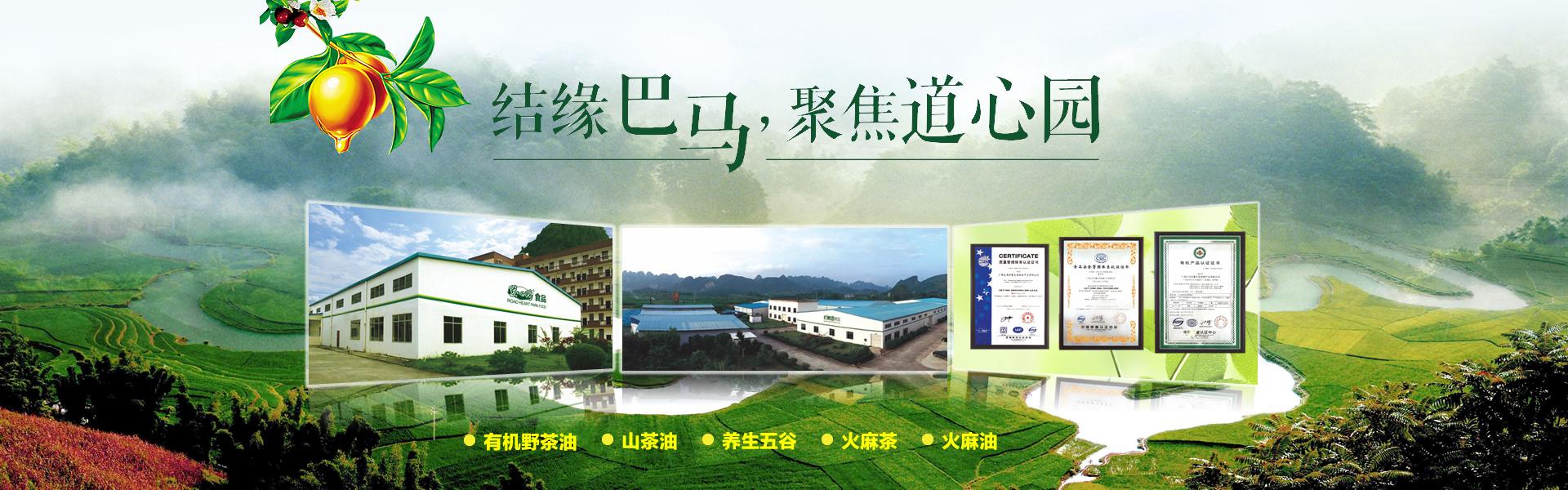广西茶油厂