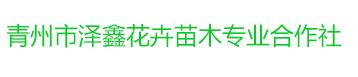 青州市泽鑫花卉苗木专业合作社