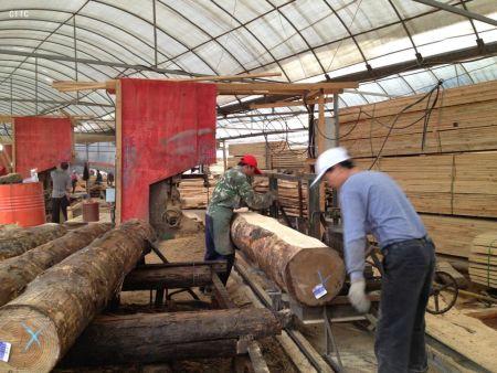枕木垫木规格定制