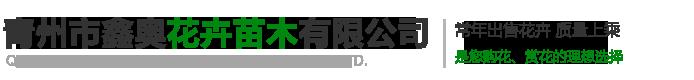 青州市鑫奧花卉苗木有限公司