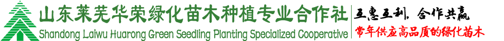 萊蕪華榮綠化苗木種植專業合作社