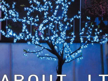 广西庭院灯安装
