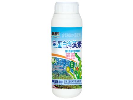 鱼蛋白海藻素