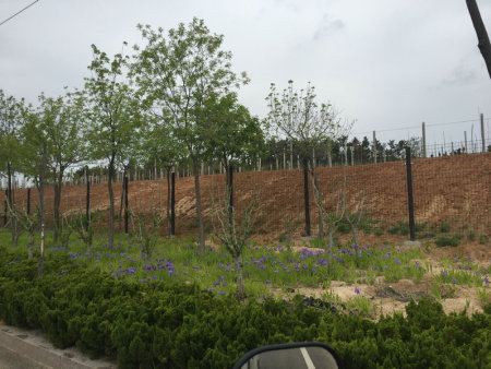 威高草庙子葡萄园围挡