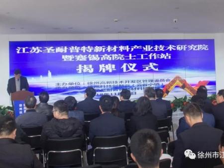 江苏圣耐普特新材料产业技术研究院暨蹇锡高院士工作站举行揭牌仪式