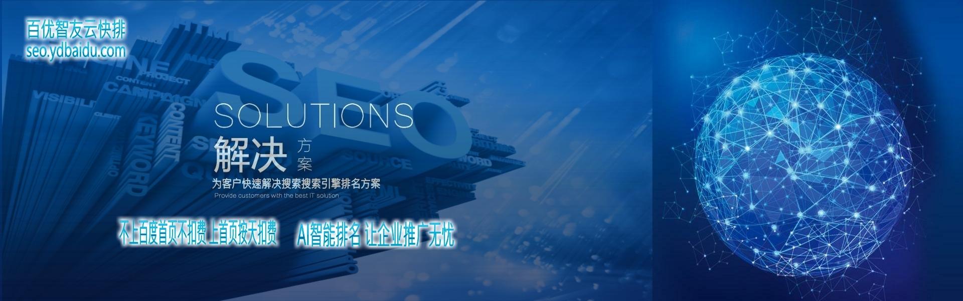 惠州網站建設推廣全網絡推廣|seo優化推廣找百優智友