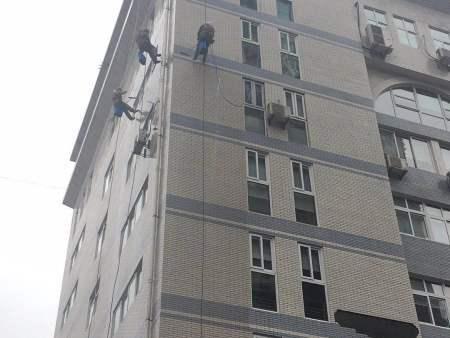 重庆山猫体育360直播山猫视频直播