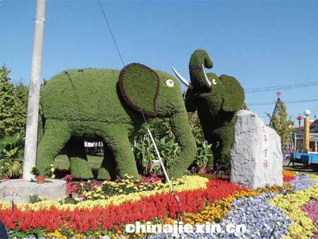 立体绿化绿雕艺术案例