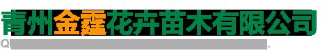 青州金霆花卉苗木有限公司
