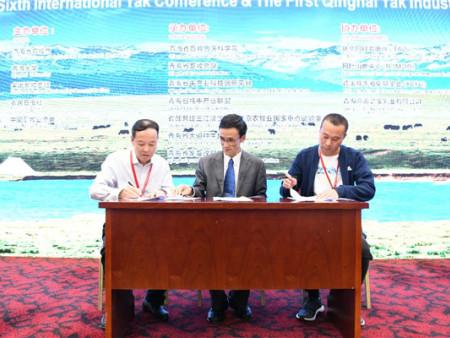 第六届国际牦牛大会暨首届青海牦牛产业大会