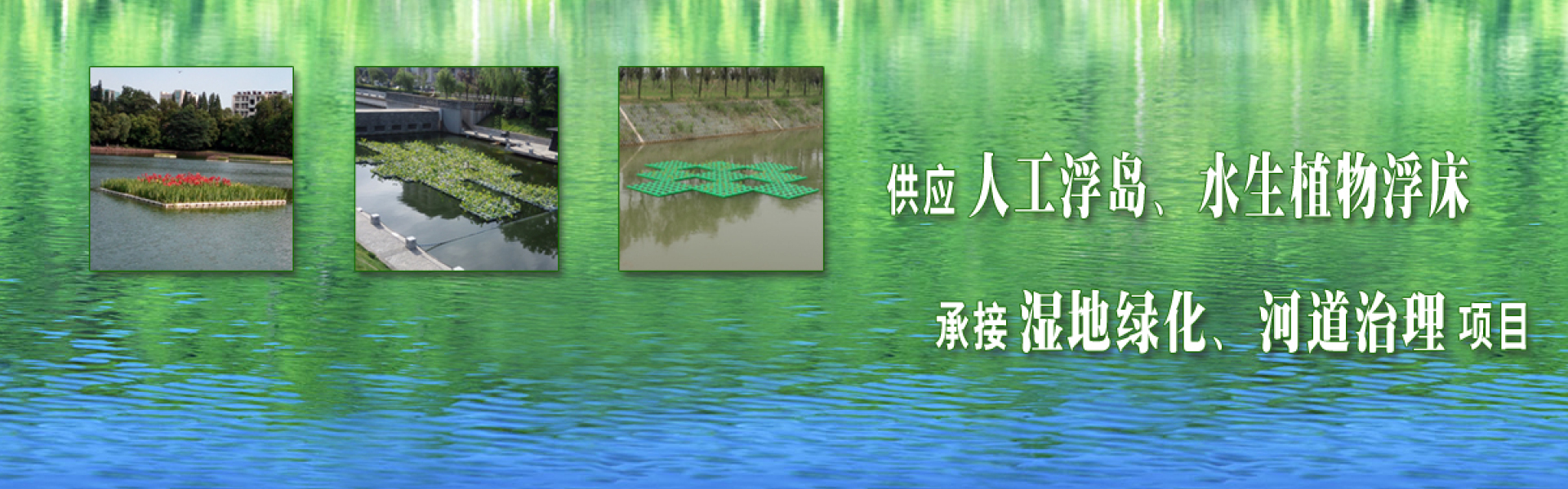 Supply artificial floating islands, floating beds of aquatic plants, undertake wetland greening, river treatment projects