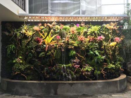 北京雨林造景:庭院生态造景工程
