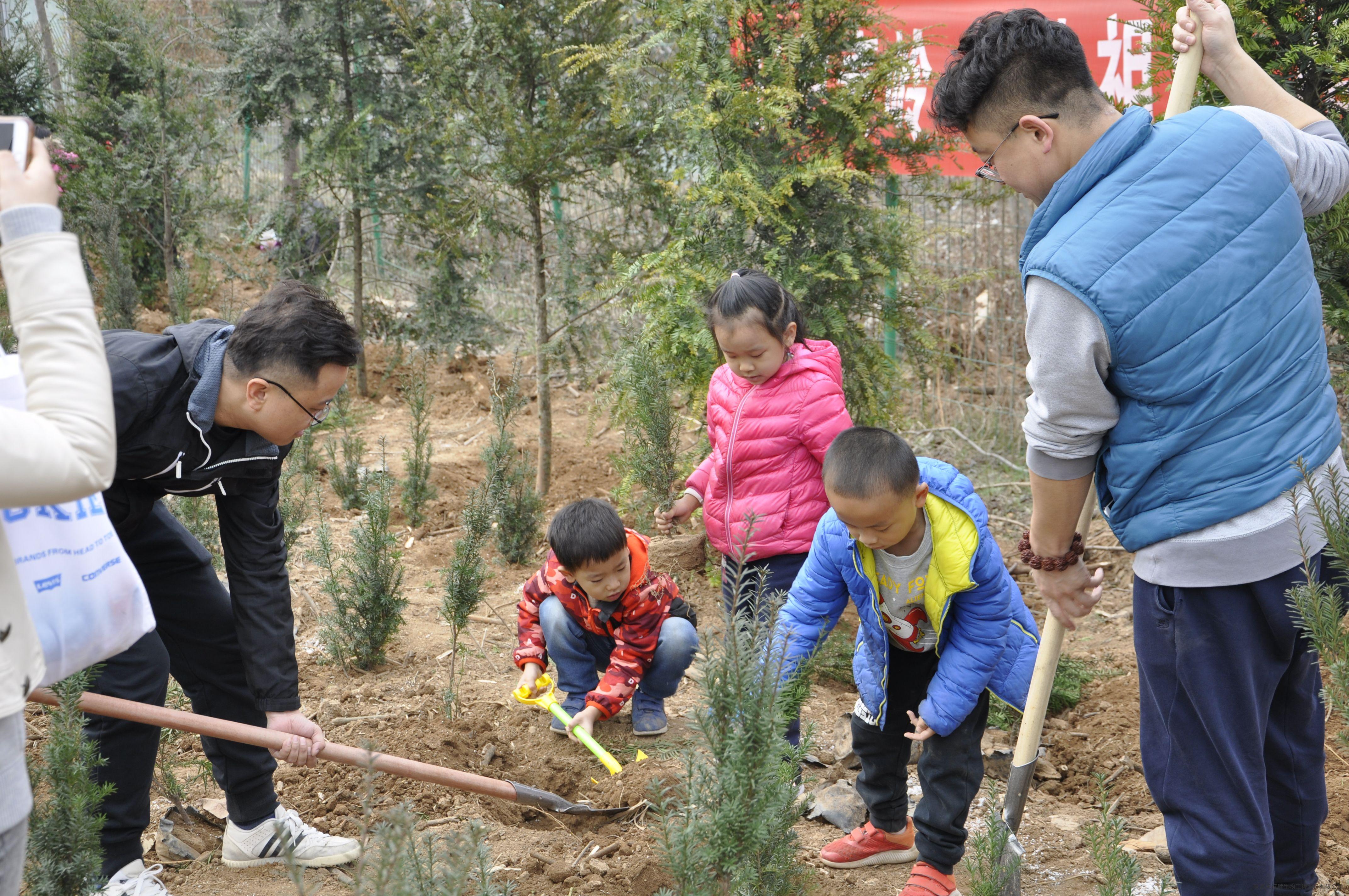 保护大自然 植树造林从小做起 ——天行健红豆杉蓝田园区亲子植树活动