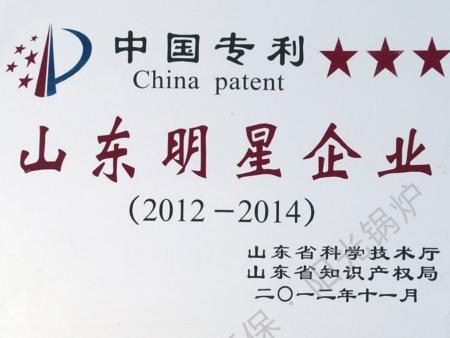 中国专利山东明星企业(三星)