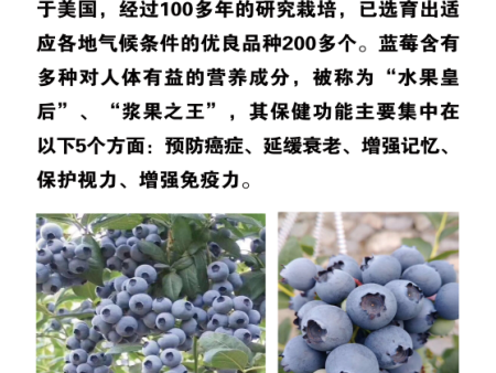 什么是蓝莓
