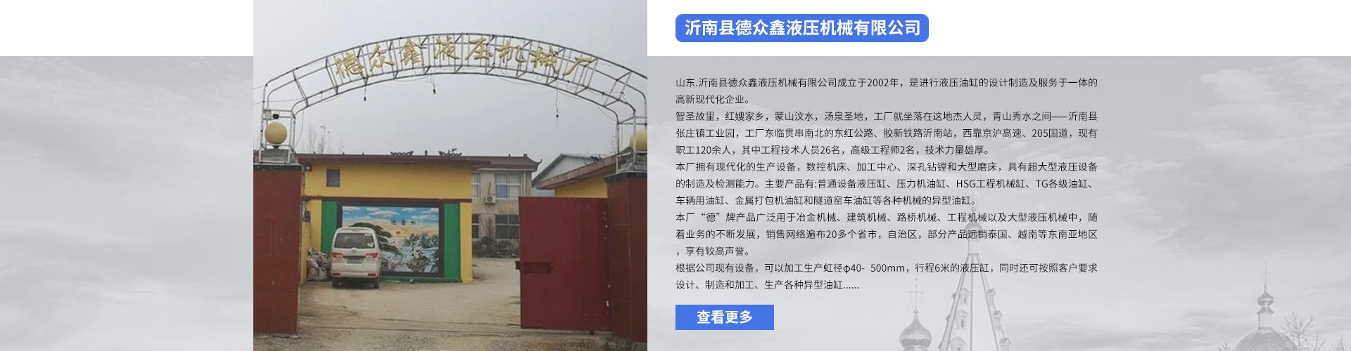 液压油缸厂家_大型油缸厂家-沂南县德众鑫液压机械有限公司
