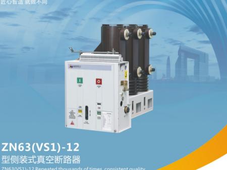 ZN63(VS1) - 12型到装式真空断路器