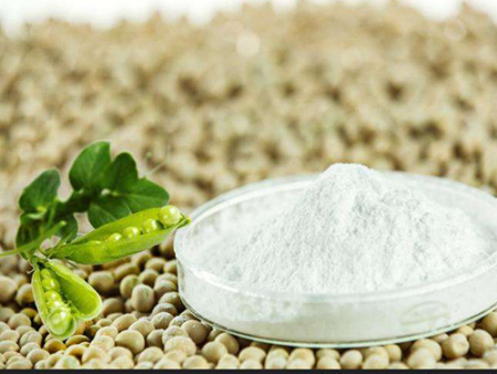 山东豌豆竞博球讯吸引商家批发购买的原因是什么