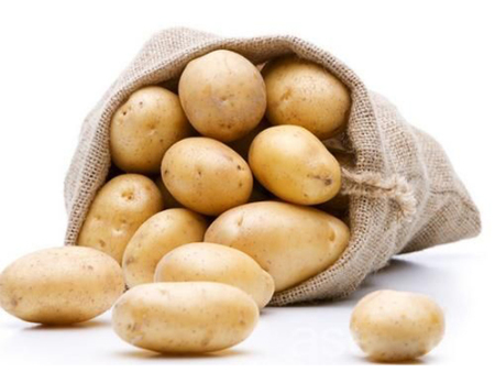 马铃薯万博app下载手机客户端价格