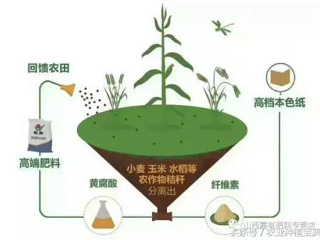 """黄腐酸肥料""""内幕""""!来看看到底什么是黄腐酸?"""