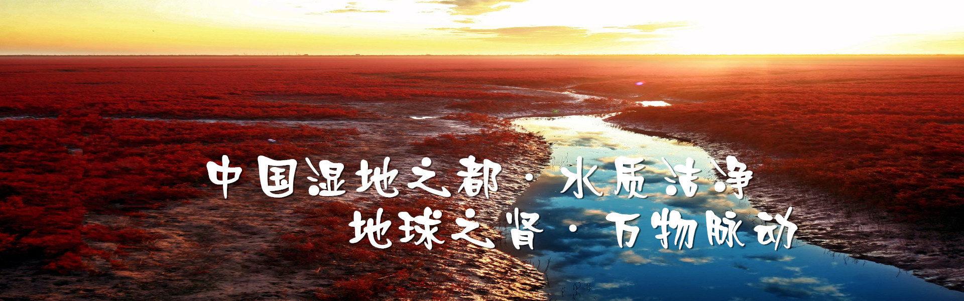 盤錦紅海灘