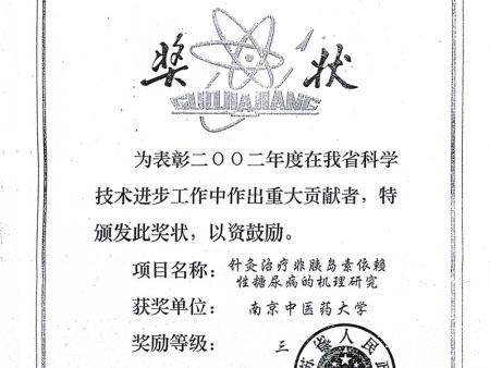 江蘇省政府三等獎證書