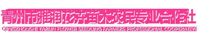 青州市雅润花卉苗木农民专业合作社
