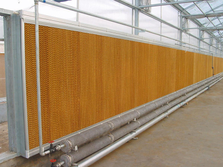 风机湿帘降温系统的温室应用