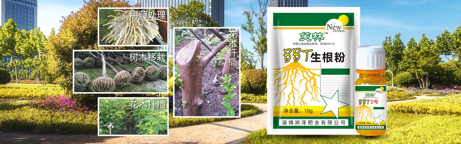 园林养护网主营园林养护、草坪护理、花木苗木养护等业务,有意向的客户请咨询我们。