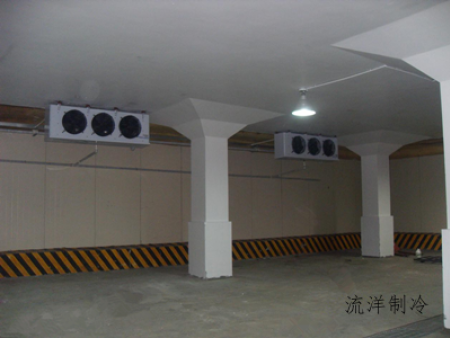 冷库工程:上海新天天物流