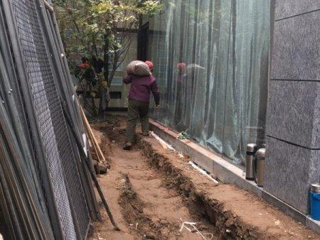 北京雨林景观解析沉木为什么黄水的原因