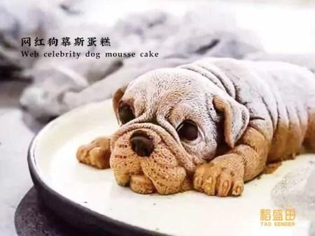 网红慕斯狗