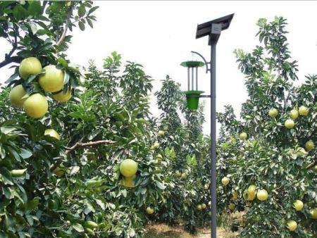 太阳能杀虫灯在食品安全上的作用
