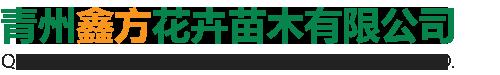 青州鑫方花卉苗木有限公司