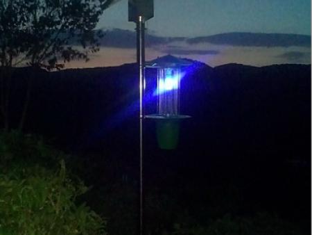 杀虫灯技术减少三成农药量