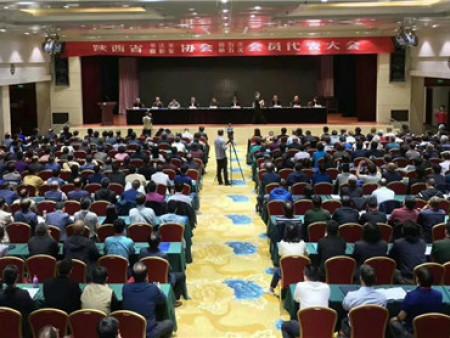西安市书协主席石瑞芳女士再次当选陕西省书协副主席