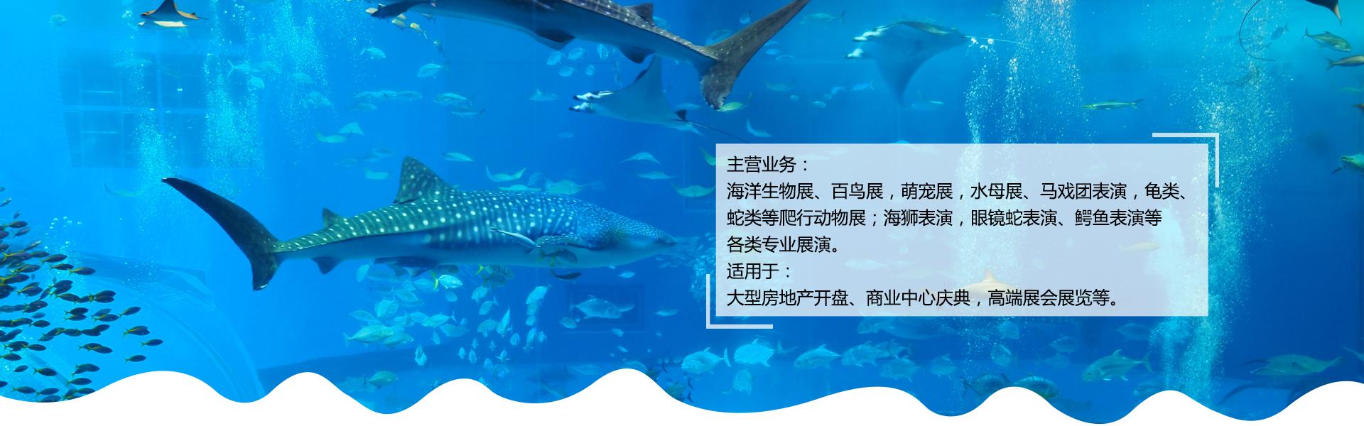 海洋生物展
