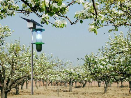 果园杀虫灯