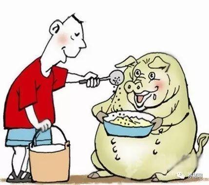 用豆渣如何做猪用浓缩饲料