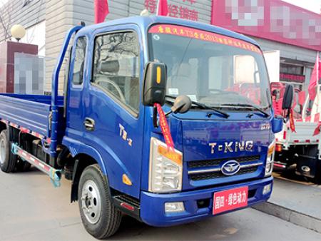唐骏T3(排半)