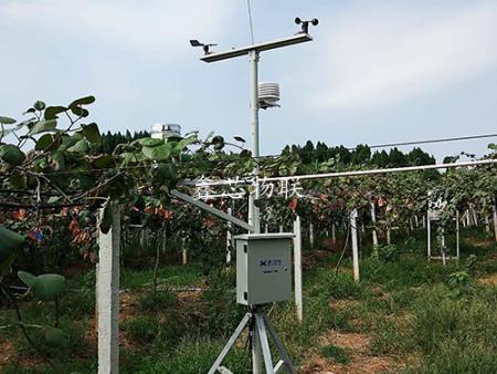 金堂县农村发展和林业局2016年水肥一体化技术模式试点项目