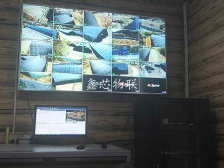 木里克尔乡宣洼村宣洼组种植基地物联网应用系统项目