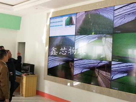 张掖市高台县景辉果蔬专业合作社物联网项目